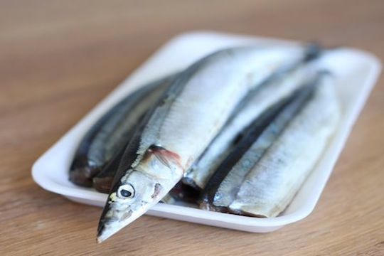 Raw Mackerel