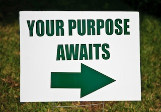 Your Purpose Awaits