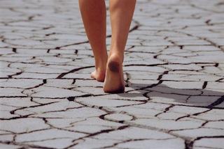 Walking, Walking, Walking