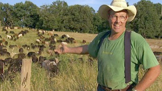Joel Salatin, a Tendergrass partner farmer, with his grass fed cows.