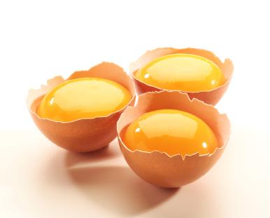 eggyolk