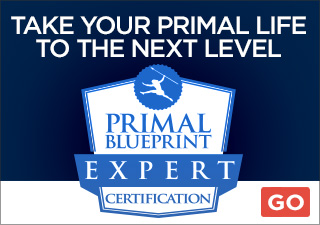 173 mark sisson the primal blueprint story connection primal primal blueprint certification malvernweather Images