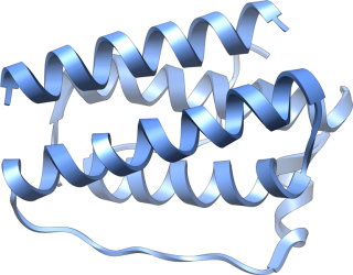 Structure of w:Leptin, PDB id 1AX8, generated with w:UCSF Chimera