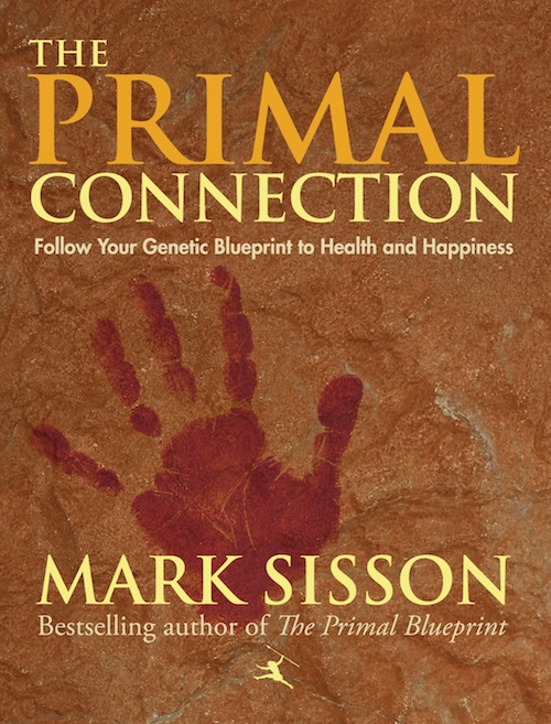Image of the Primal Posture DVD preview