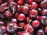 cherries 160x120