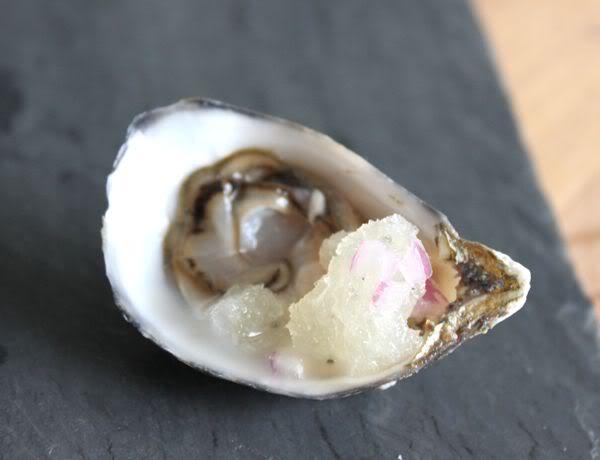 Raw Oysters Garnished with Savory Lemon Granita
